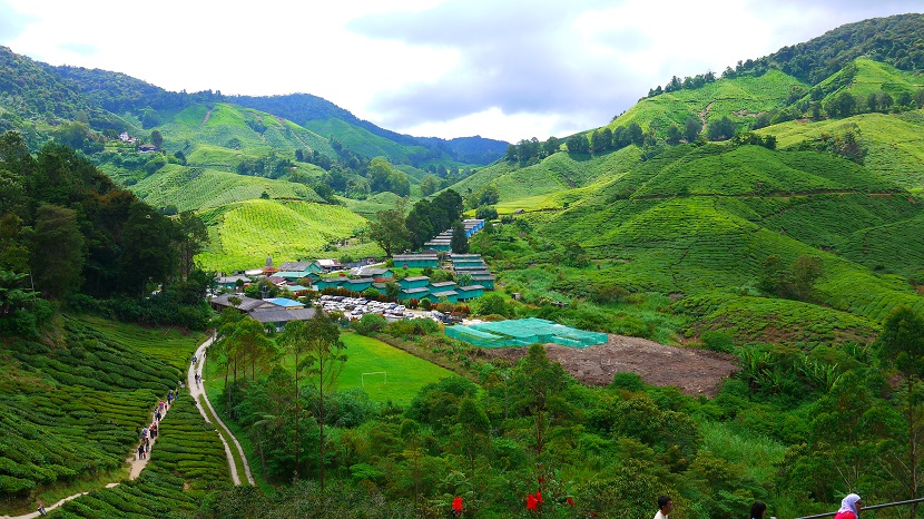 image Malaysia's Highlands jpg